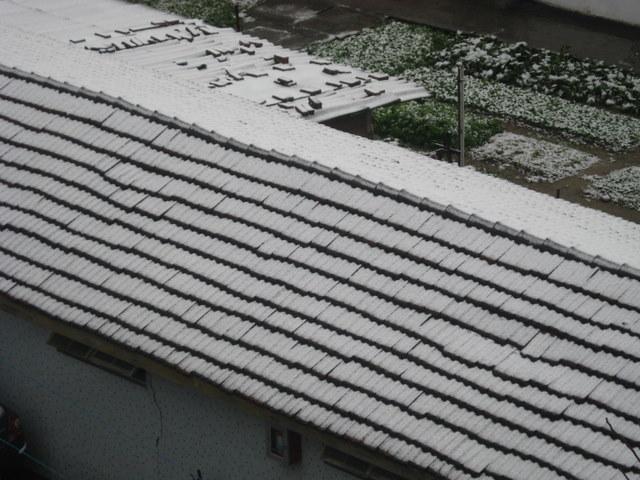 2008年上海雨雪